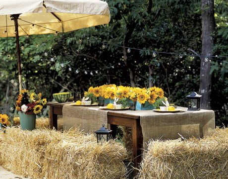 bales-hay-yellow-flowers-enter0706-de