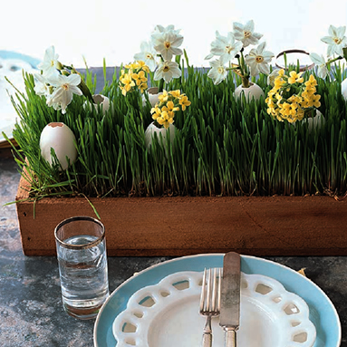 grp_edr_centerpiece_mar08